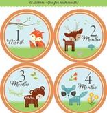Fleurish Home *last chance* Baby's Monthly Milestone Stickers: Woodland Friends