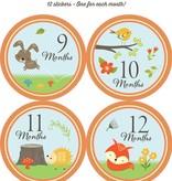 Fleurish Home Baby's Monthly Milestone Stickers: Woodland Friends