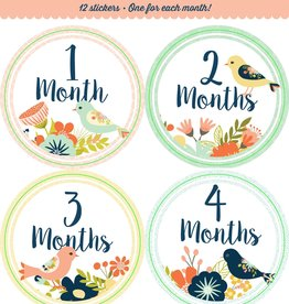Fleurish Home *last chance* Baby's Monthly Milestone Stickers: Birds