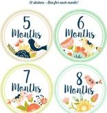 Fleurish Home *last chance* Baby's Monthly Milestone Stickers: Birds