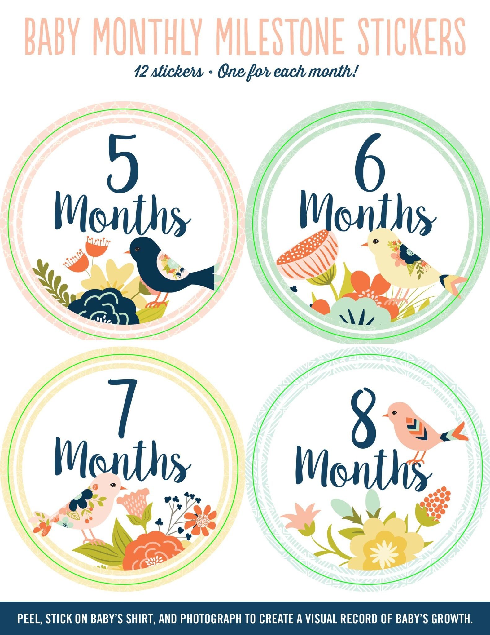 Fleurish Home Baby's Monthly Milestone Stickers: Birds