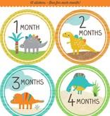 Fleurish Home *last chance* Baby's Monthly Milestone Stickers: Dinosaurs