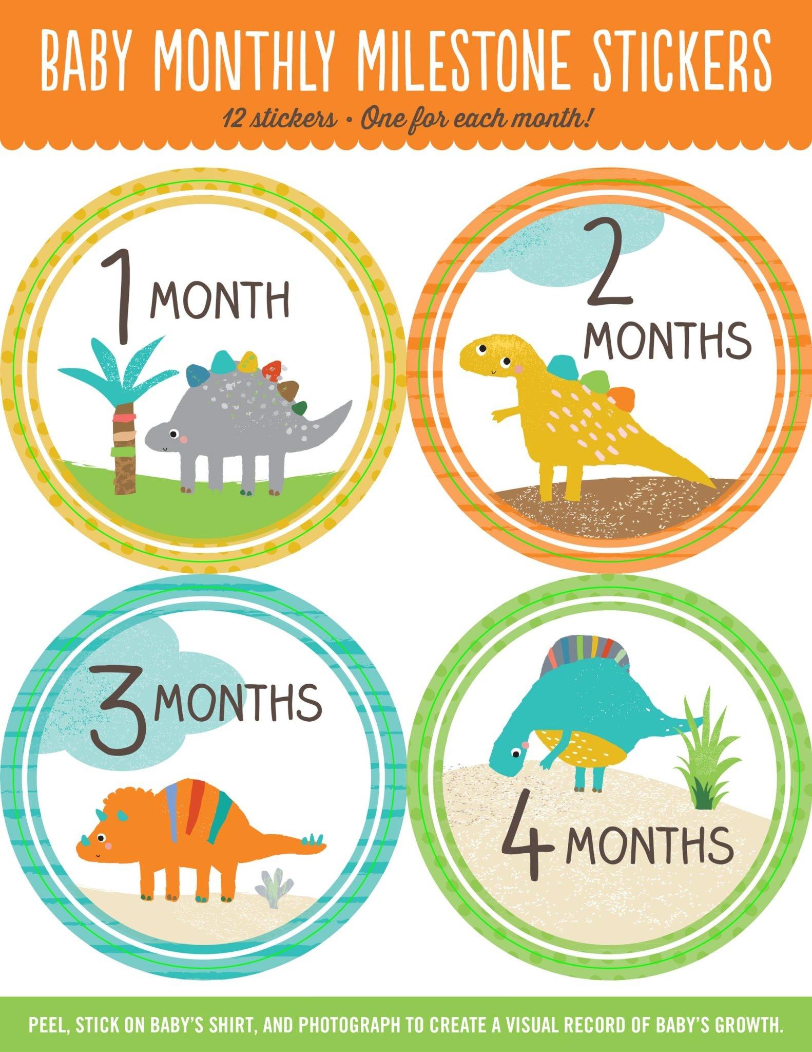Fleurish Home Baby's Monthly Milestone Stickers: Dinosaurs