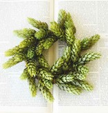 Fleurish Home Small Hops Candle Ring Mini Wreath