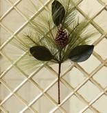 "Fleurish Home Mixed Pine & Magnolia Spray 24"""