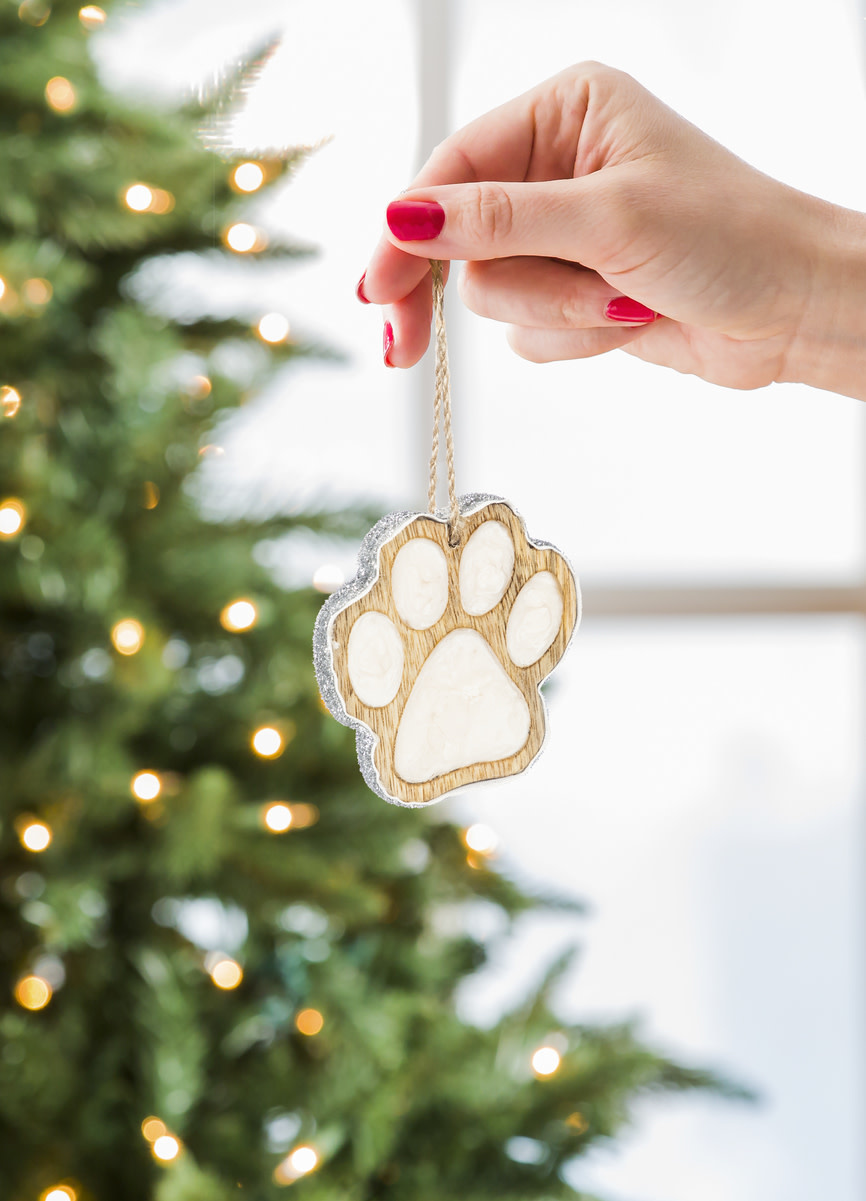 Fleurish Home Wooden Paw Ornament