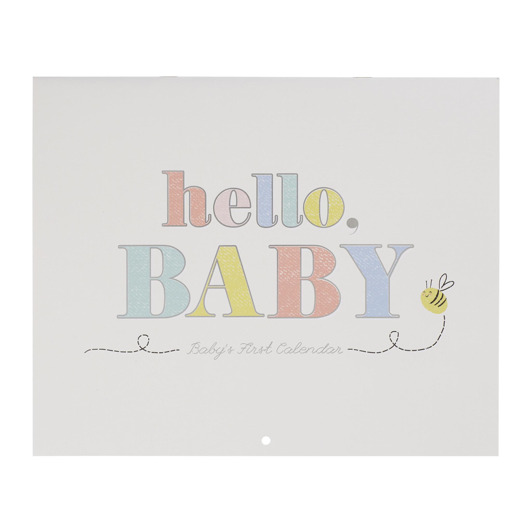 Fleurish Home Hello Baby First Year Keepsake Calendar