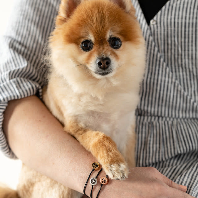 Fleurish Home Loving Memories Pet Bracelet - Silver