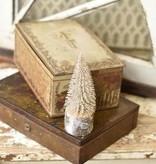 Fleurish Home Mini Snowy Foxtail Pine Tree *last chance