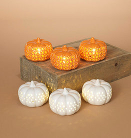 Fleurish Home B/O Lighted Ceramic Pumpkins (choice of 2 colors)
