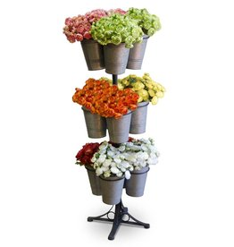 Fleurish Home Mini Ranunculus Single Stem