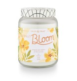 Tried & True Tried & True Coconut Bloom XLarge Jar