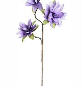 Fleurish Home Botanica #780