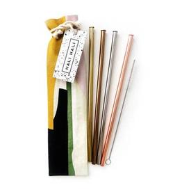 Straws Blocks Reusable Straws - 6 Piece Set