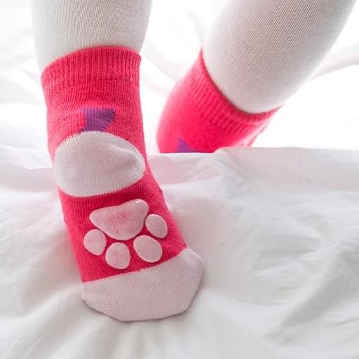 Sugar Bear Zoo Socks - Bear, Hippo, Cat