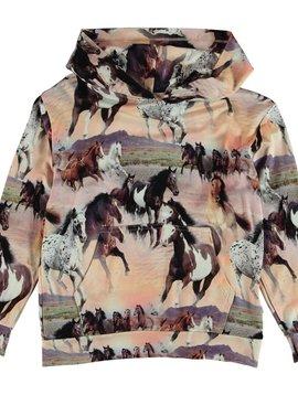 molo Rhona Hoodie - Wild Horses - Molo Kids