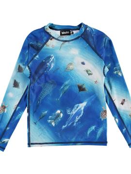 molo Neptune Rash Guard - Ocean - Molo Kids Swimwear
