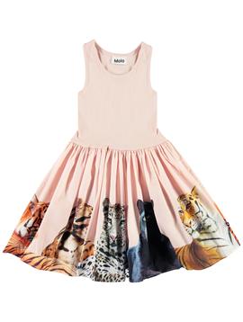 molo Molo Kids Dress Cassandra Big Cats