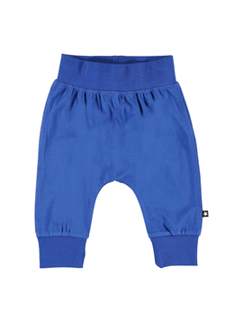 molo Molo Baby Boy Royal Sammy Pants