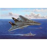 Hobby Boss (HBO) 1/48 F-14B Tomcat