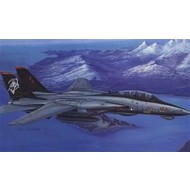 Hobby Boss (HBO) F-14D Super Tomcat 1/48