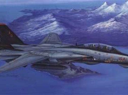 Hobby Boss (HBO) F-14D Super Tomcat 1/48