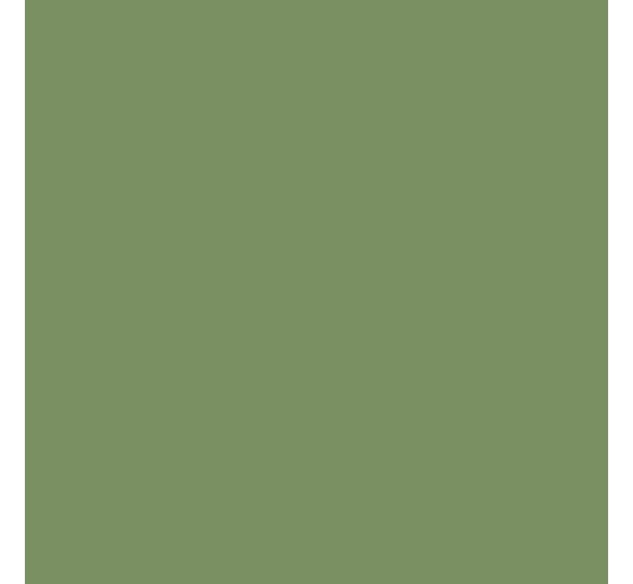 MMP079 RAF Interior Green