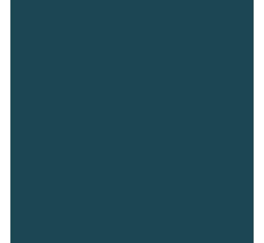 Gloss Grey USN FS 16081 1oz Acrylic