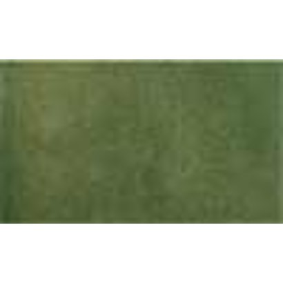 WOO - Woodland Scenics 785- RG5142 14.25  x 12.5  Grass Sheet Green