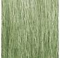 FG173 Field Grass  Lt Green/8g