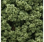 FC135 Underbrush Bag  Lt Green/18ci