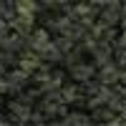 WOO - Woodland Scenics 785- FC149 Bushes Clump Foliage Forest Blend