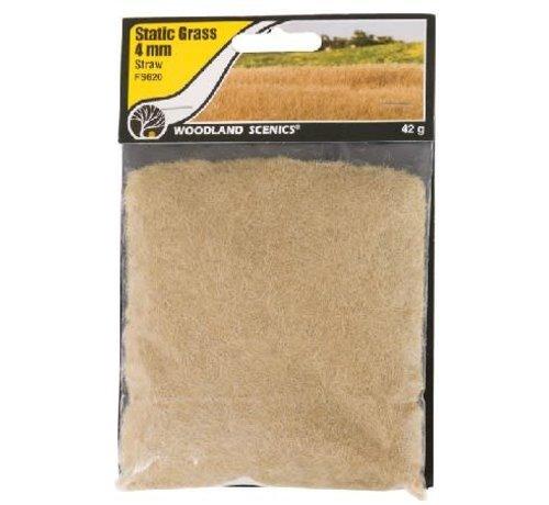 WOO - Woodland Scenics 785- FS620 Static Grass, Straw Green 4mm