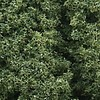 WOO - Woodland Scenics 785- Foliage Cluster Bag  Med Grn/45ci