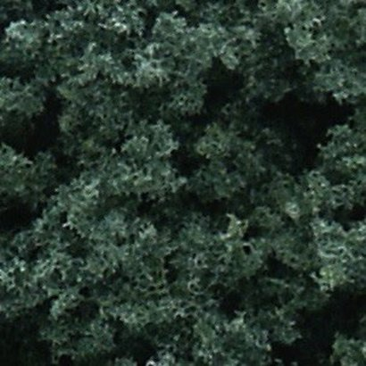 WOO - Woodland Scenics 785- FC59 Foliage Cluster Bag  Dk Grn/45ci