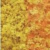 WOO - Woodland Scenics 785- F55 Foliage Bag  Early Fall/90.7 si