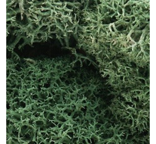Woodland Scenics (WOO) 785- L162 Lichen Bag  Lt Green/82ci