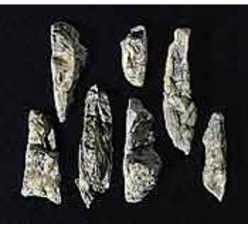 Woodland Scenics (WOO) 785- C1233 Rock Mold  Embankments