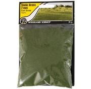 WOO - Woodland Scenics 785- FS613 Static Grass, Dark Green 2mm