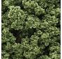 FC682 Clump-Foliage Bag  Lt Green/55ci