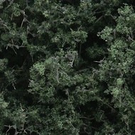 WOO - Woodland Scenics 785- F1130 Fine Leaf Foliage  Dk Green/75ci