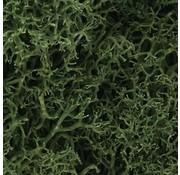 WOO - Woodland Scenics 785- L163 Lichen Bag  Med Green/82ci