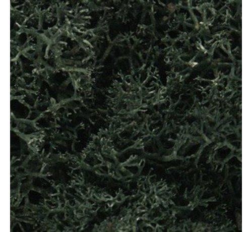 WOO - Woodland Scenics 785- L164 Lichen Bag  Dark Green/82ci