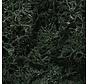 L164 Lichen Bag  Dark Green/82ci