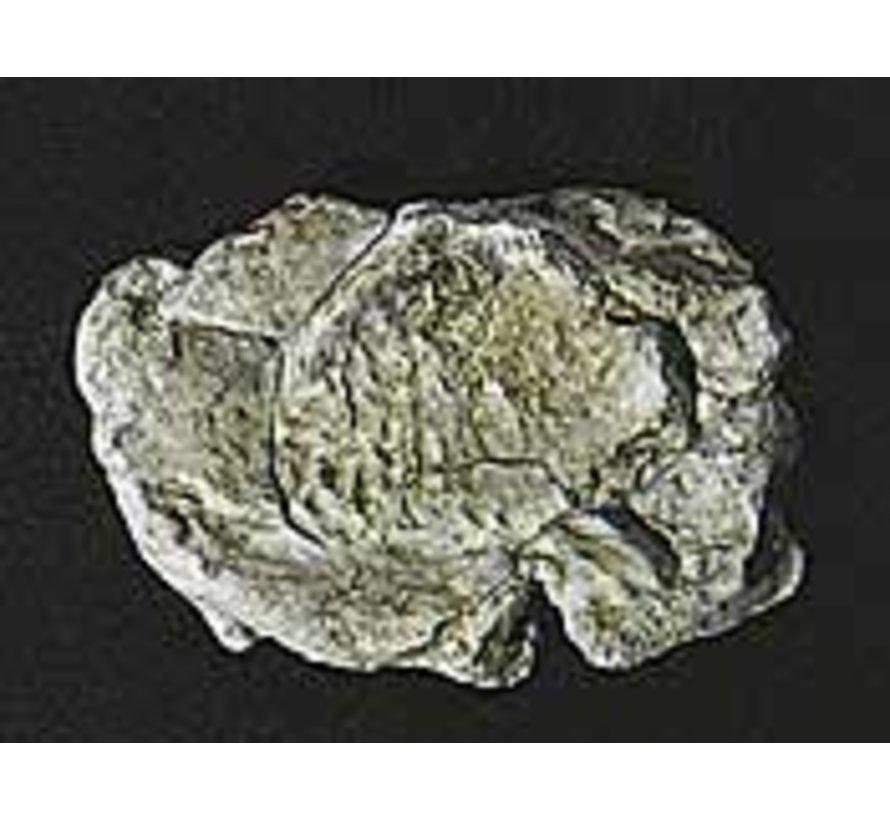 Rock Mold  Wind Rock