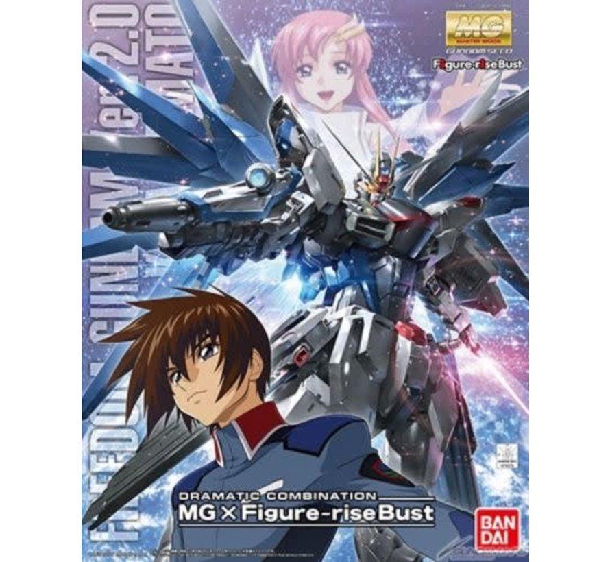 216378 Dramatic Combination Freedom Gundam Ver 2.0