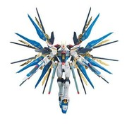 BANDAI MODEL KITS #14 Strike Freedom Gundam RG