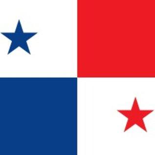 MNS Panama Flag 4x6