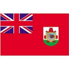 "DEF Bermuda 12"" x 18"" Courtesy Flag - Nylon"