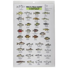 Freshwater Fish of North America - Mac's Field Guide